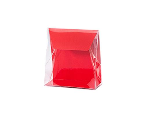Pochette transparant L100xW50/H110mm strawberry