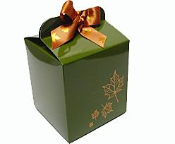 Cubebox 125x125x125mm Autumn design  Vert foret laque