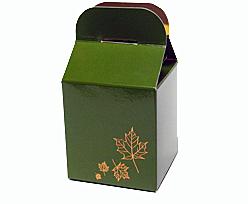Cubebox 75x75x75 Autumn design  Vert foret laque