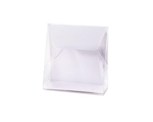 Pochette transparant L100xW50/H110mm white